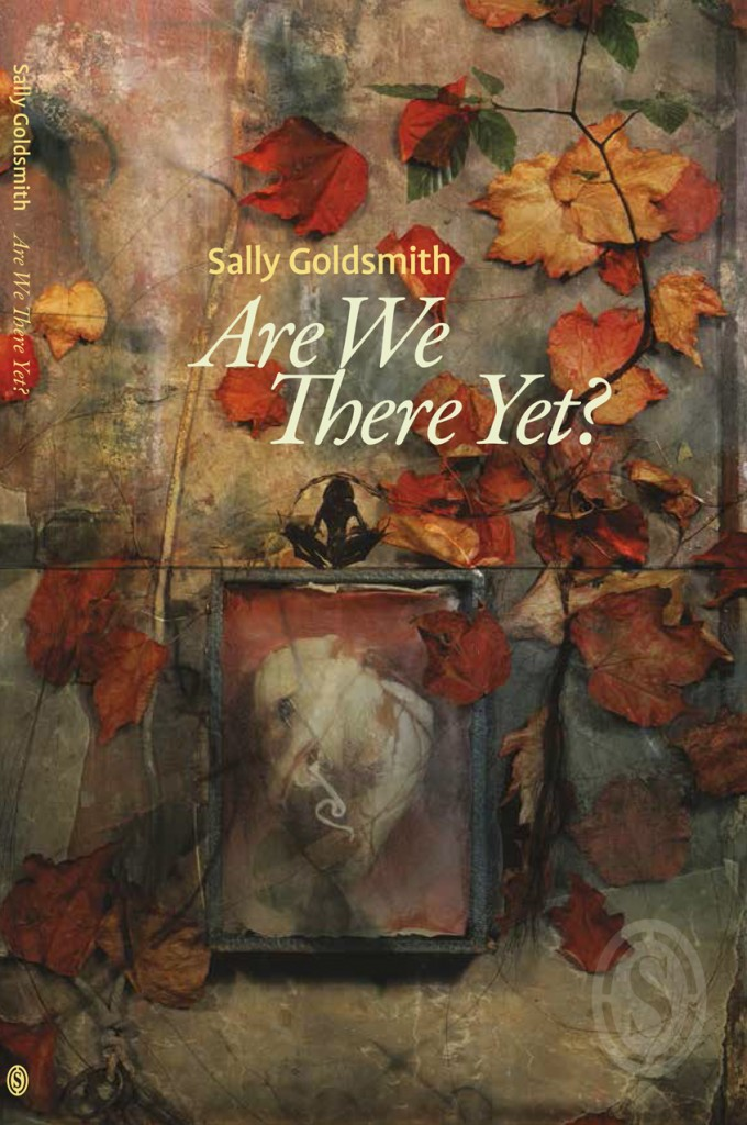 book-cover-for-sally-goldsmith-are-we-there-yet-680x1024